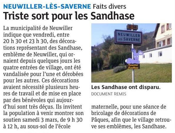 Sandhase 27 02 18
